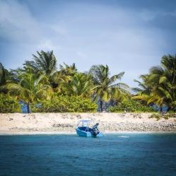 Caribe_15 (3)